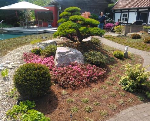 Niwaki-Projekt Badeteich-Bepflanzung Bonsai.NRW