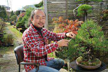 Haruhiko Tsuchiya gestaltet Bonsai im Garten von Hans-Joachim Kleimann